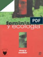 Mary Mallor, Feminismo y Ecología