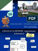 curs _bf_13 part2 comunicare cel.ppt
