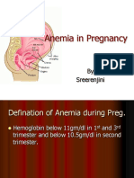 Anemia_Pregnancy.ppt