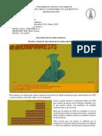 Electroforesis de rtual de electroforsis de acidos nucleicos