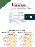 Aula 5 - Bioeletrogênese e Potencial de Membrana.pdf