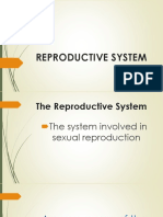 REPRODUCTIVE-SYSTEM.pptx