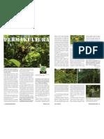 Wegetariański Świat Permakultura i leśne ogrody