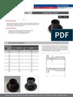 terminal brida gibault.pdf