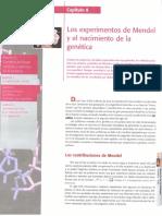 Curtis H, Barnes N S, Schenek A, Massarini A. (2008). Biología. 7ª Edición. Editorial Médica Panamericana. Buenos Aires. Cap 8