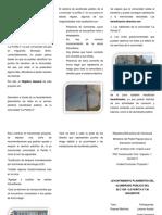 Triptico Proyecto Drely