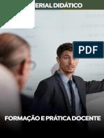 FORMAÇÃO-E-PRÁTICA-DOCENTE.pdf