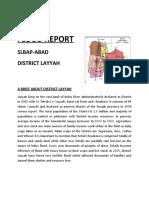 Copy of FLOOD REPOR District Layyah