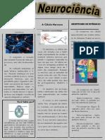 Jornal Clube de Ciências - Neurociência