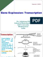 Transcription(Semister I MIC)