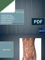 ABDOMEN Y PELVIS final.pptx