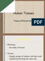 HumanTissues (1).ppt