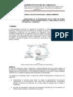 135181983-Plan-Salud-Ocupacional.doc