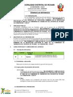 TDR Riesgo de Ingeniería GG 04-07