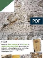 Fósseis_1 (1)