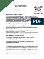 rectificado_superficies_planas