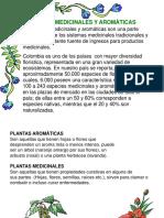 PLANTAS MEDICINALES Y AROMÀTICAS