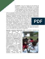 Proyecto de alfabetización integral en una unidad pedagógica