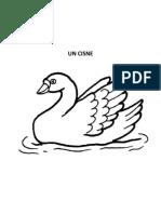 Un Cisne Para Dibujar