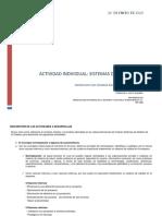 Guia_Actividad Individual_ (1)-convertido.docx