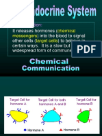 Endocrine_and_Nervous_R.ppt