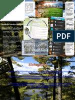 Infografia-Catedra