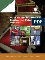 Guía de ECF 2019