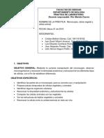 Informe_laboratorio_microscopia