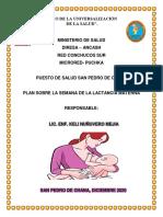 plan Lactancia Materna