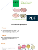 3.11 Tissues and Organs for Students.pdf