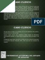 neumonia-en-terneros-161204164447.pptx