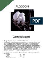 Generalidades algodón