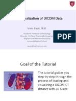 3DVisualizationDICOM_Slicer4.8_SoniaPujol