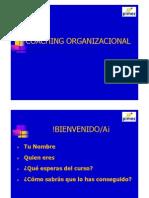 Coaching Organizacional 01