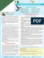 Checkup PDF