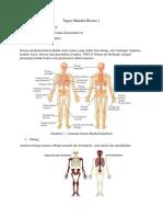 Sistem muskuloskeletal