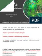 Palestra_Orixás