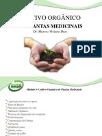 Slide-Cultivo Orgânico de Plantas Medicinais.pdf