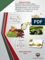 tesis doctoral (1).pdf