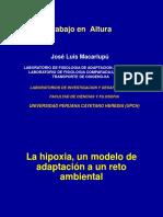 altura,medicina ocupacional-Jose Luis Macarlupu