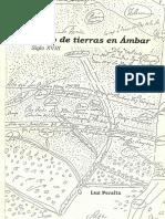 2002 - Peralta, Luz - Pleito tierras Ámbar s. XVIII