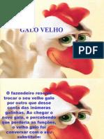 GaloVelho