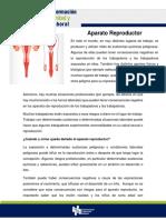 FORMACION DE SEGURIDAD Y SALUD LABORAL- 9.- Sistema Reproductor