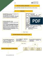 PROCESO LABORAL ORDINARIO.pdf