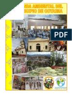 2011_Agenda_Ambiental_del_Municipio_de_Coyaima.pdf