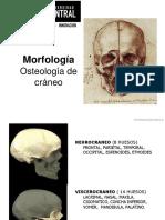 Clase 1 cráneo y SNC.pdf
