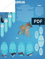 Infografía Ballenas