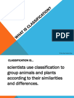 classification of animals and plants powerpoint