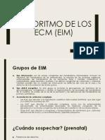 ALGORITMO DE EIM