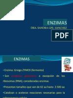 1enzimas-150522012754-lva1-app6892